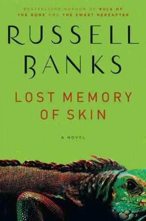 Lost Memory of Skin cover